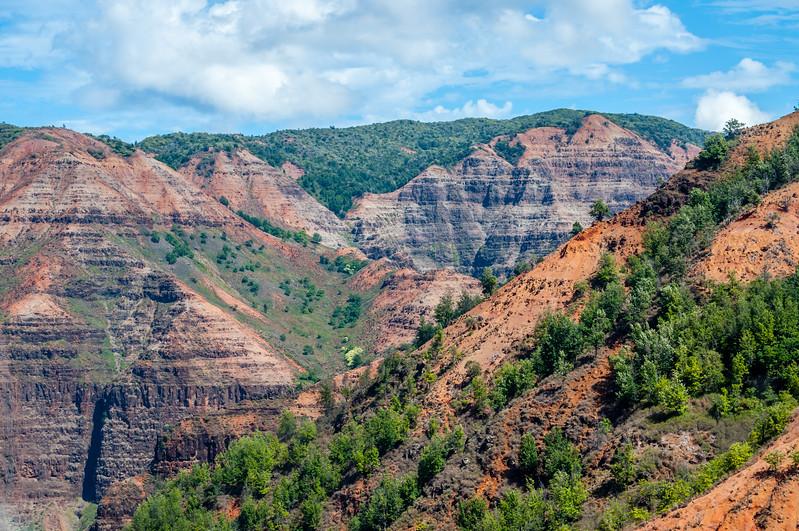 Beauty of Waimea Canyon