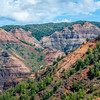 Beauty of Waimea Canyon