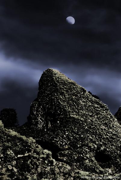 Moonrise Over Point Lobos