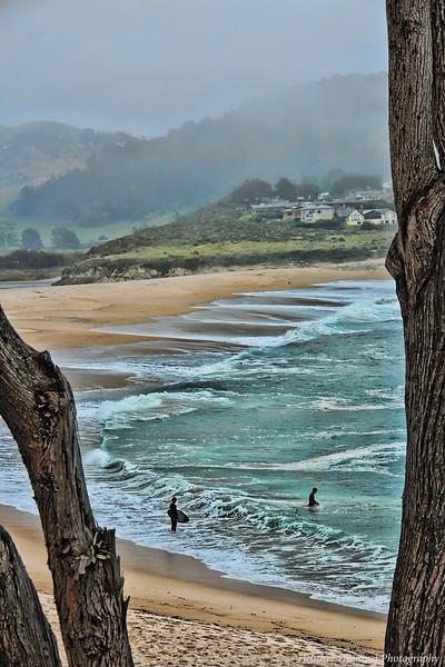 Stewart's Cove