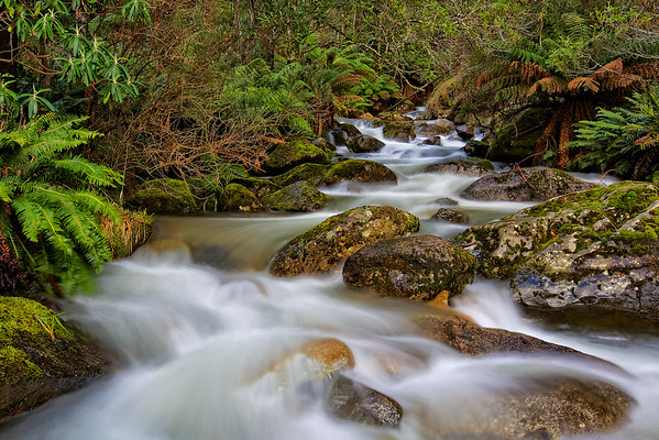 Alpine Stream - Snowy Mountains Australia