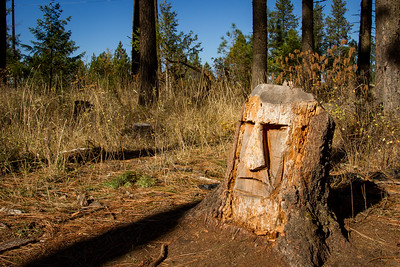 Art In the Woods ~ English Point  - Hayden, ID