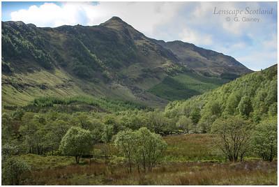 Beinn a'Chapuill from upper Gleann Beag