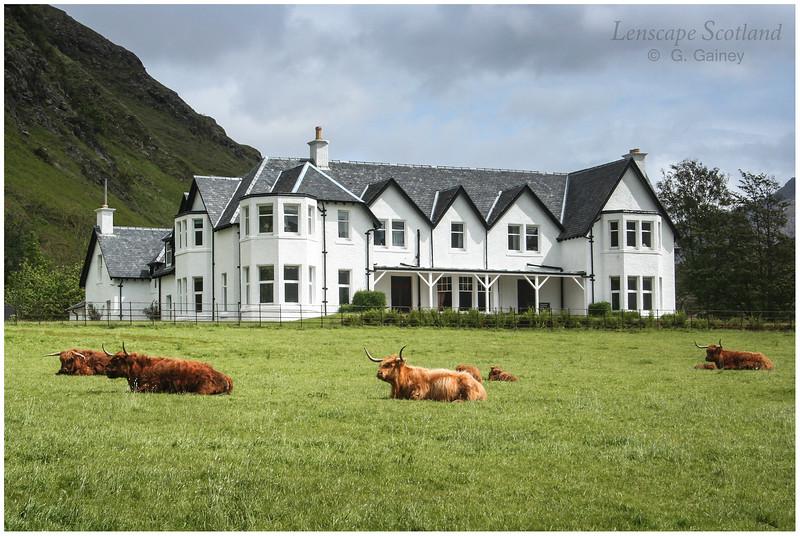 Arnisdale Lodge