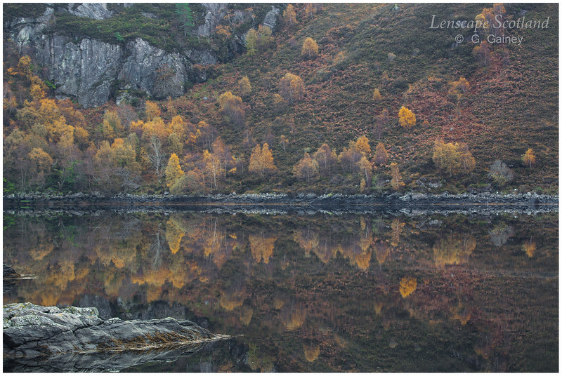 autumnal reflections, Loch Long