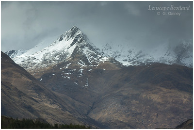 Forcan Ridge from Glen Shiel