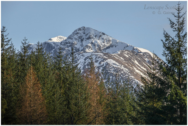 Bidean nam Bian from Glencoe forest trail