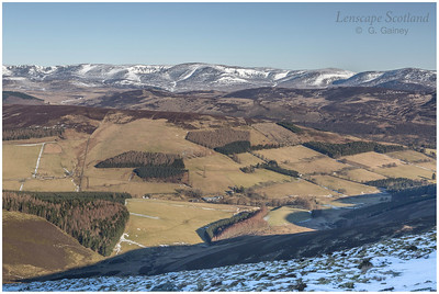 Glen Prosen and Glen Clova hills from Cat Law