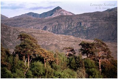 Sgorr Ruadh from Glen Torridon (scanned from a 1999 slide)