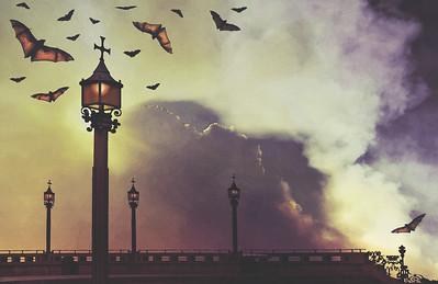 Bats by Lamp Light
