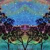 Aurora Grove