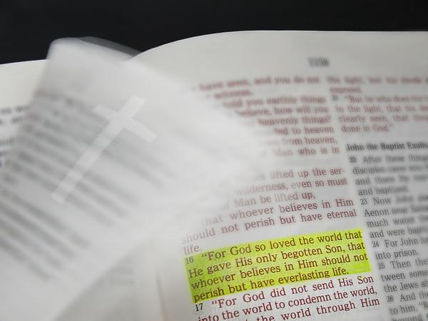 Joh 3:16