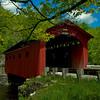 Vermont Bridge with a Tree
