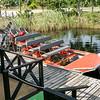 Airboat Adventure & Safari