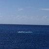 Grand Cayman - Submarine surfacing - Video
