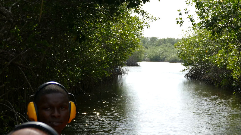 Belize -  Airboat ride - Video
