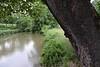 Antietam Creek from the Burnside Bridge, Sharpsburg MD