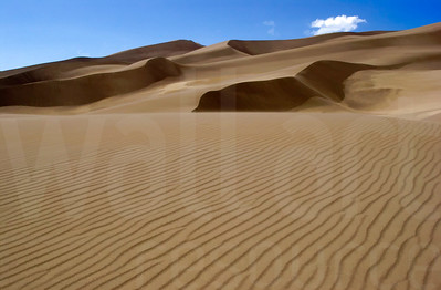 Colorado Sand Dunes 005 | Wall Art Resource