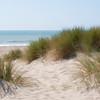 Sandy Beaches 022 | Wall Art Resource