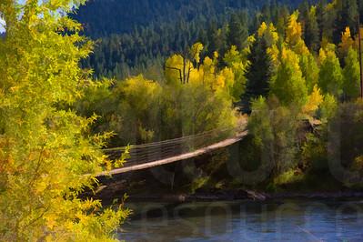 Colorado Fall Foliage 031 | Wall Art Resource