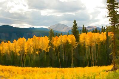 Colorado Fall Foliage 013 | Wall Art Resource