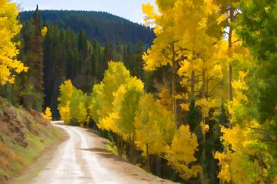 Colorado Fall Foliage 010 | Wall Art Resource