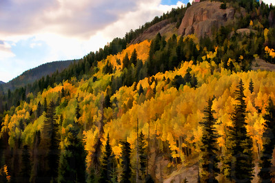 Colorado Fall Foliage 007 | Wall Art Resource