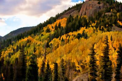 Colorado Fall Foliage 007 | Wall Art Resource