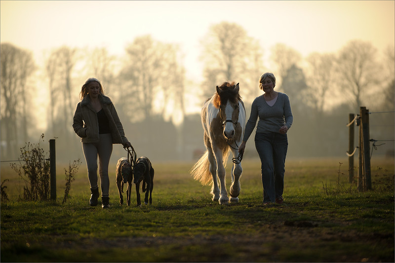 Horse and owner photography in West London