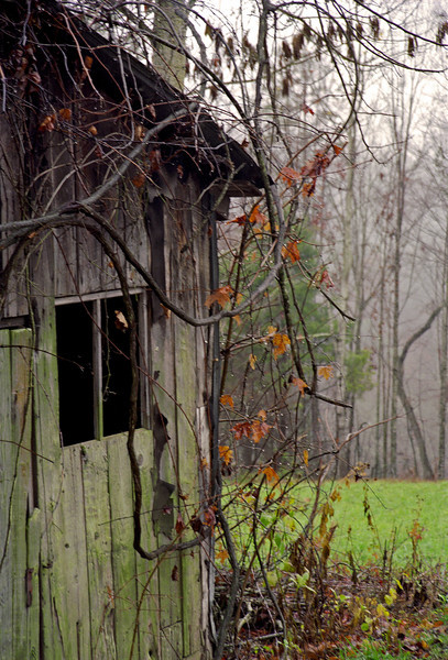 Tennessee Shack
