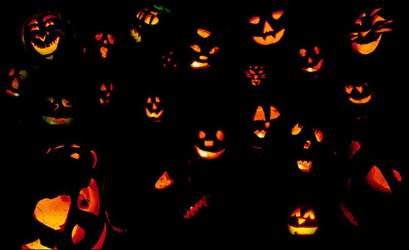 Crowd of Pumpkins-2