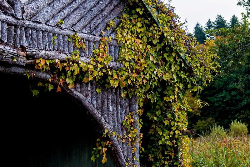 Boathouse at Ashford