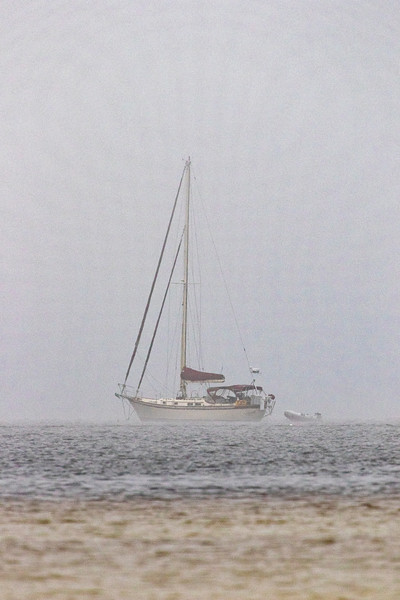 Foggy Sail