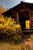Ashcroft Cabin