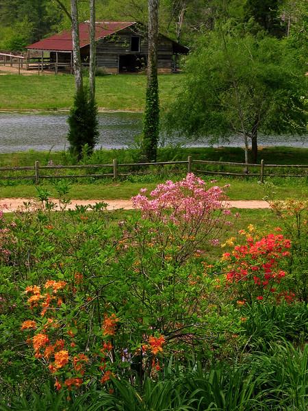 Barn, Pond, & Path 1