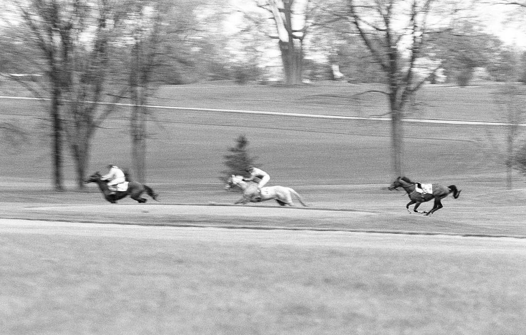 Three Horses - Two Riders