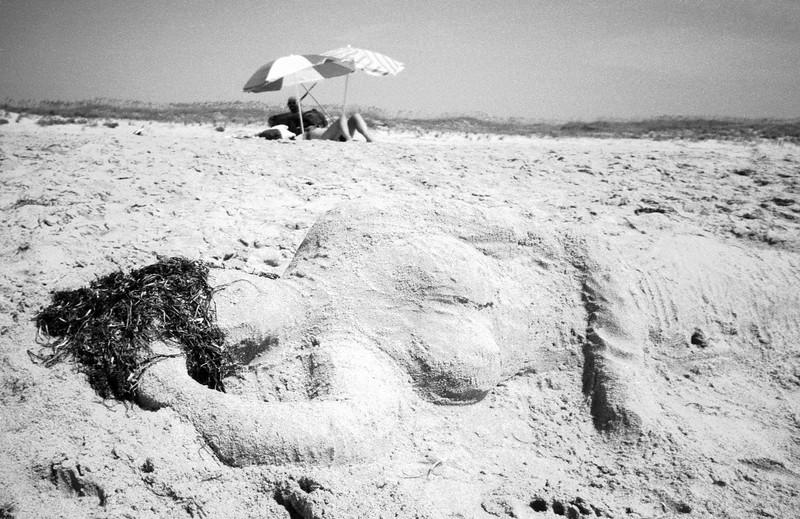Sandy At The Beach