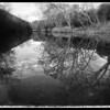 Location: Barton Creek, Austin Texas<br /> Camera: iPhone 5<br /> Apps Used: PhotoToaster<br /> Copyright: 2013