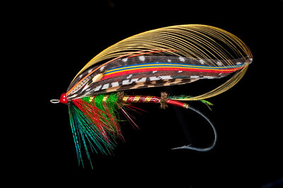 Fully dressed salmon fly
