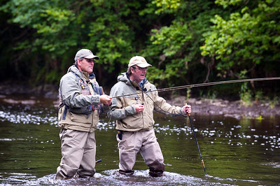 River Maine - Fly angler fishes for salmon, sea trout and salmon with an angling guide at Shane's Castle on the River Maine, Co Antrim, N Ireland