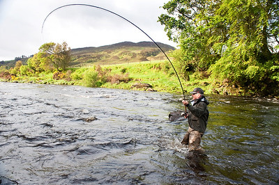 River Finn - Fly fisherman plays salmon on River Finn, Donegal, Ireland