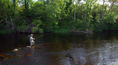 River Drowes - Casting to rising trout on River Drowes, Leitrim, Ireland