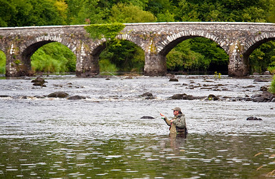 River Maine - Fly angler fishes for salmon, sea trout and salmon at Shane's Castle on the River Maine, Co Antrim, N Ireland