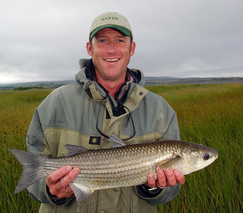Bann Estuary - Fly angler with a fly caught mullet on the River Bann estuary, Co Londonderry/ Co Antrim N. Ireland