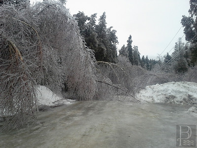 cn_web_ice_storm_gallery_010214_10