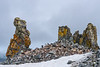 Chinstrap Penguin Colony and Stone Pillars
