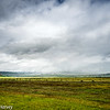 Fields to Headland
