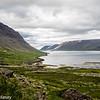 West Iceland Fjord