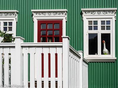 Green House, Reykjavik