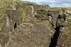 Extrusive igneous palagonite rock - clustered with lithophytic vegetation - Fjaðrárgljúfur (gorge).